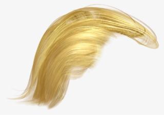145-1457265_trumps-hair-png-donald-trump-hair-png-transparent.jpg